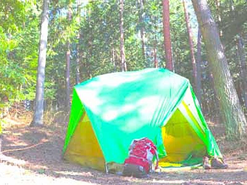 グリーンロッジ キャンプサイト